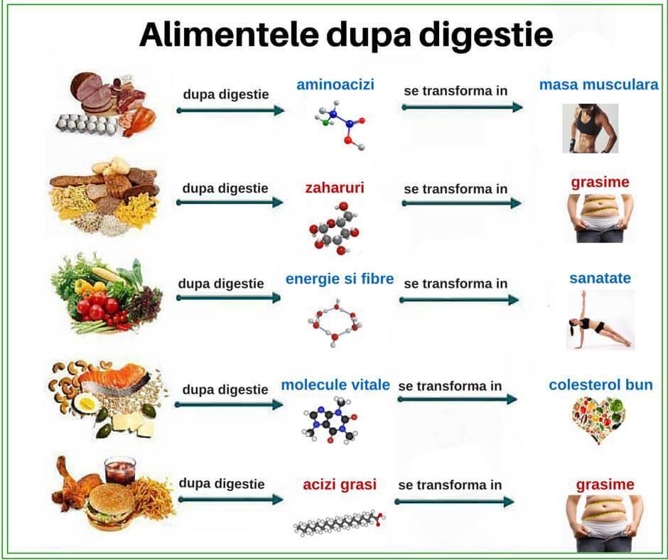planuri alimentare masa musculara